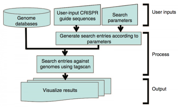 COSMID- A Search Tool for CRISPR/Cas Target Sites
