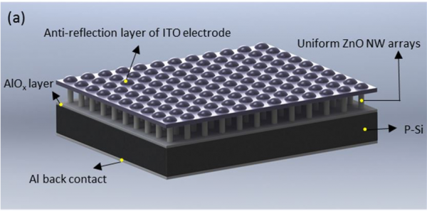 Schematic structure of a 3D photodetector. A thin film of insulator AlOx is deposited on p-Si substrate. The nanowire arrays were grown vertically on the insulator layer. The ITO layer is core-shelled with the tips of ZnO nanowires, suspended as the ceili
