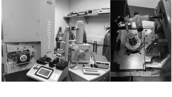 Mass spectrometer and scanning electron microscope