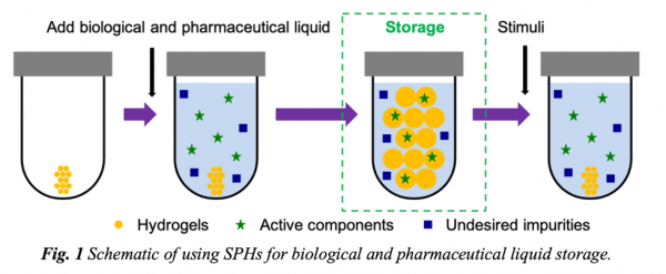 Smart Porous Hydrogels to Increase Cold Supply Chain Efficacy of Biologics and Pharmaceuticals