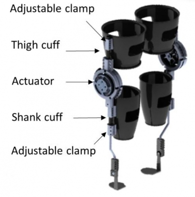 Powered Bilateral Knee Exoskeleton for Rehabilitation of Children and Adults